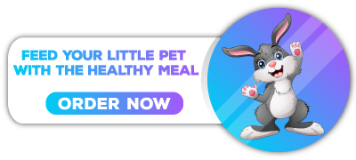 small pet food on 4petneeds