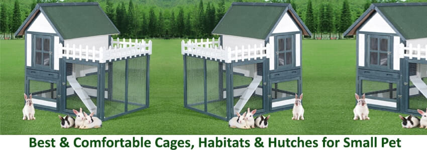 Cages, Habitats & Hutches