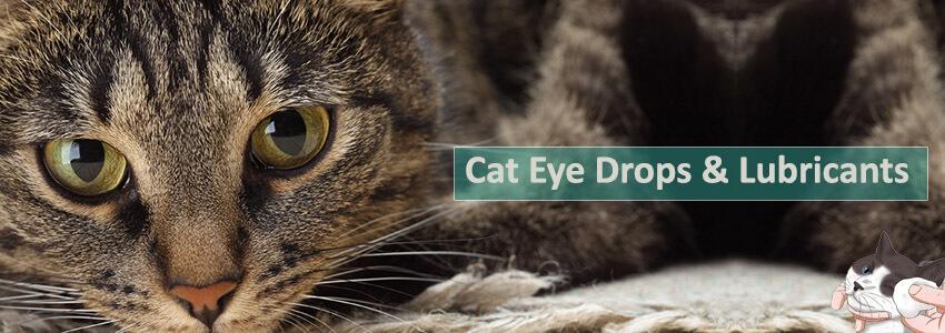 Eye Drops & Lubricants
