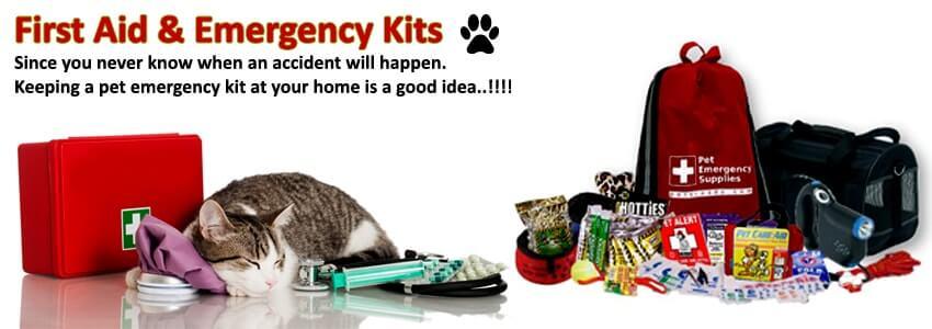 First Aid & Emergency Kits