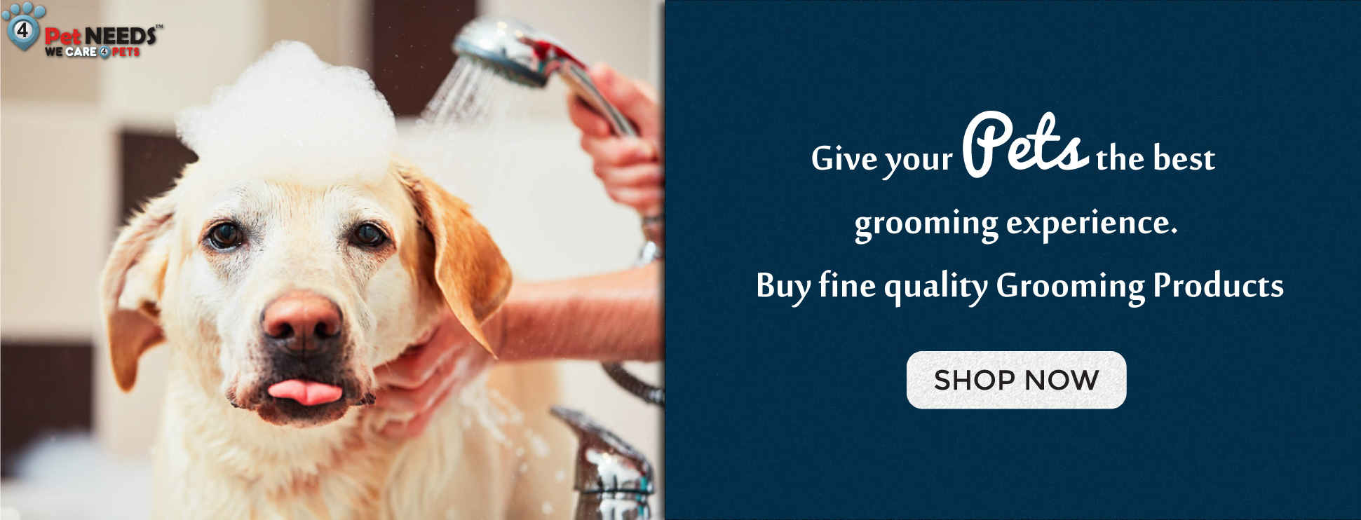 Grooming-Banner-main-website3.jpg