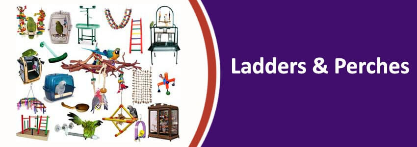 Ladders & Perches