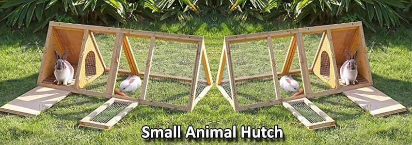 Small Animal Hutch