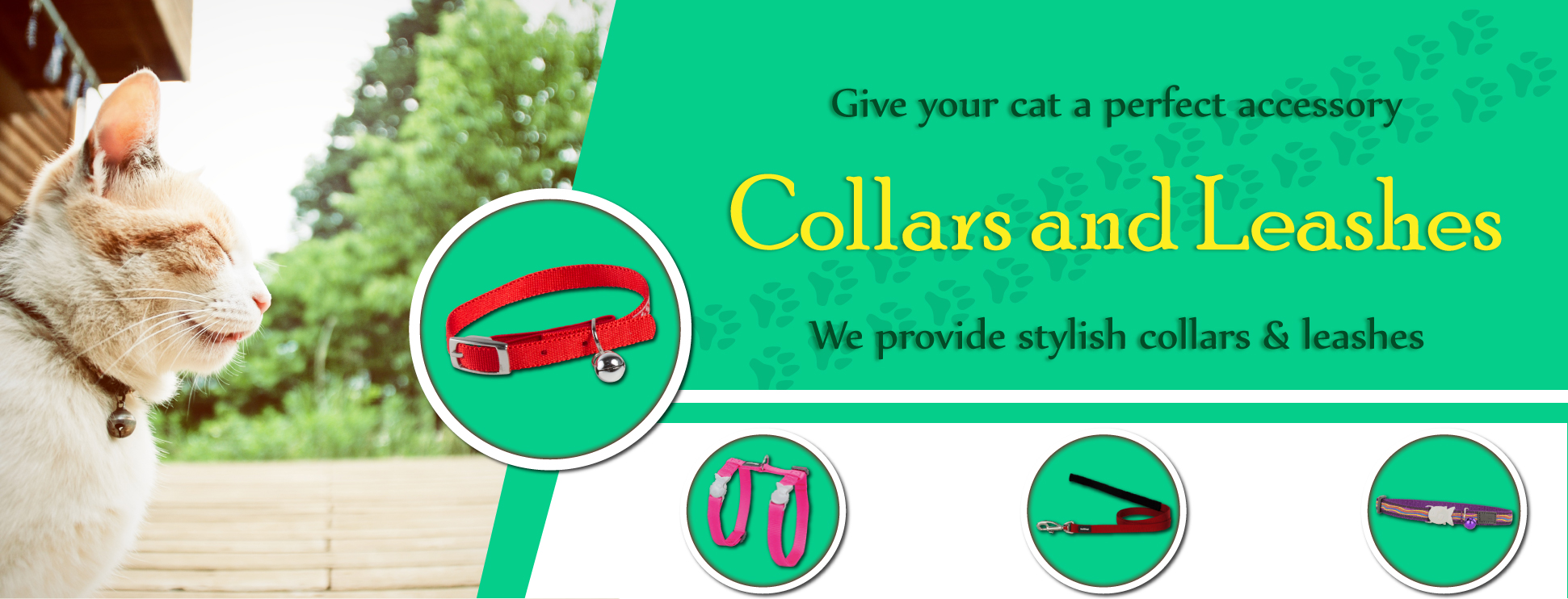 cat-collar-for-web1.jpg