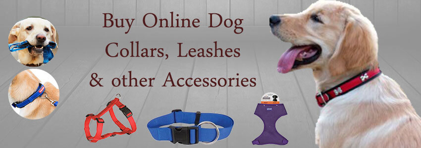 Collars Leashes