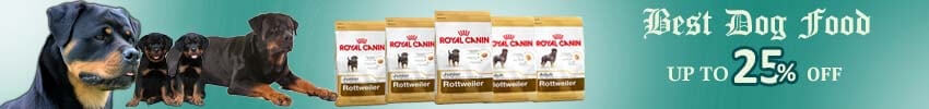 What are the Best Techniques For Rottweiler Puppy Training?
