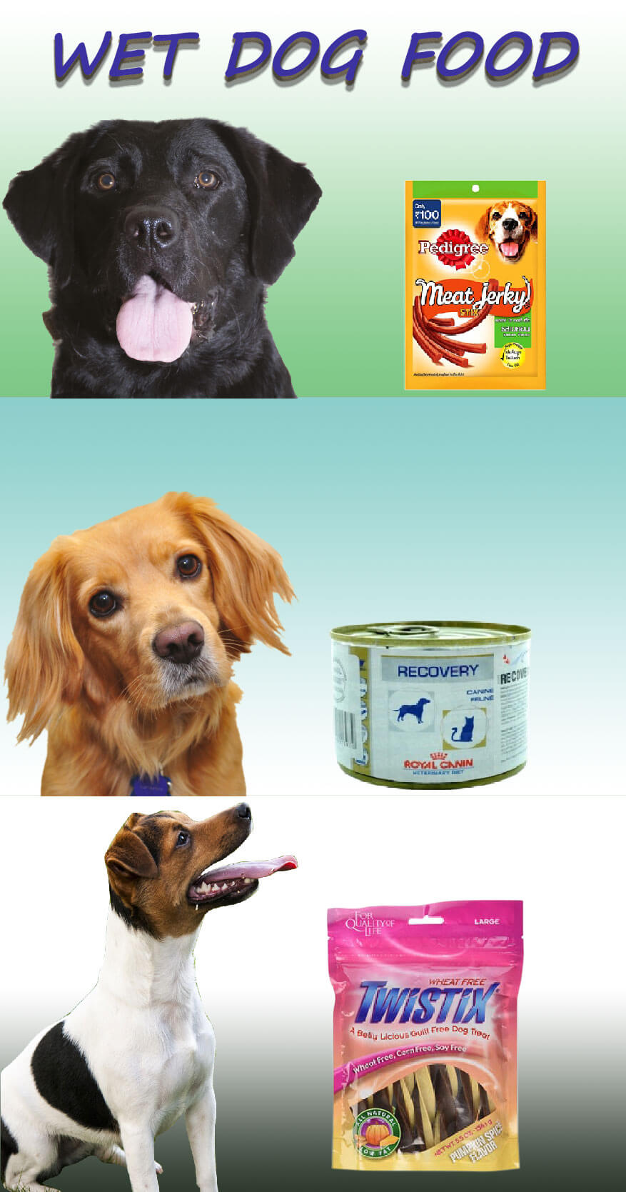 The benefits of wet dog food for the betterment of your dog's health