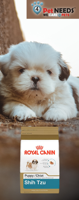 What to look for when buying dog food for Shih Tzu and other toy breeds