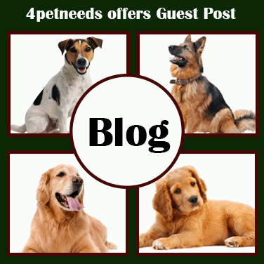 guest posting blogs on 4petneeds.com