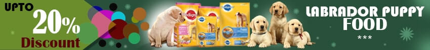 Pedigree Dry Dog Food is best for feeding Your Labrador Puppies