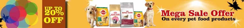 Healthy Feeding Tips and the Best Pet Food For Dogs