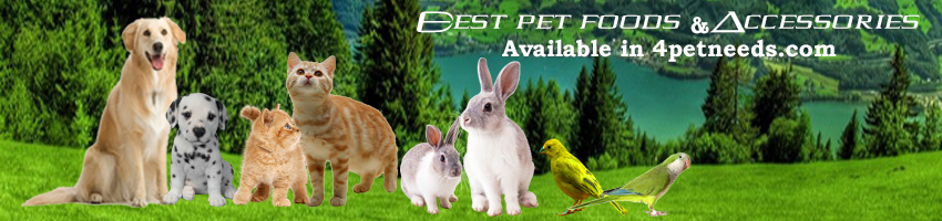 4petneeds about us