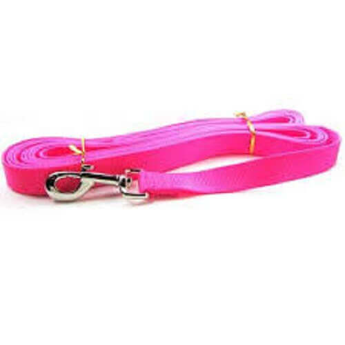PETMATE NYLON DOG LEAD HOT PINK