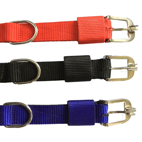 Dog Collar 2 Ply