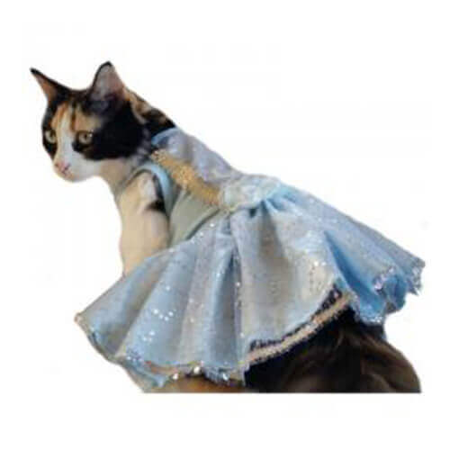 Blue Princess Cat Dress