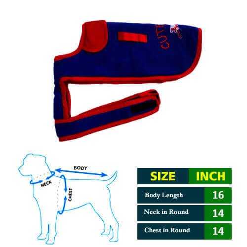 Cute Blue Dog Coat with Red Collar 16No
