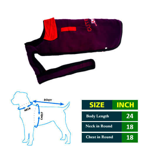 Cute Dog Violet  Blue Coat with Red Collar 24No