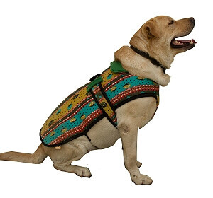Flannel Dog Coat