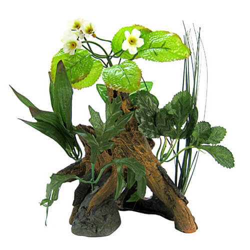 Environments Chestnut with Plants Aquarium Ornament