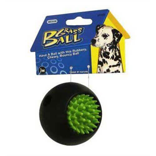 JW Pet Company Grass Ball Dog Toy, Medium (Colors Vary)