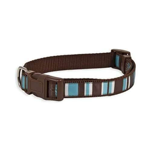 Aspen Pet Delicious Stripes Collar5/8''X10-14''