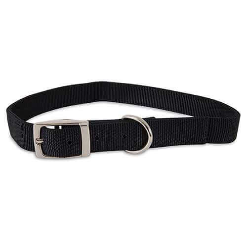 Aspen Pet Nylon Collar