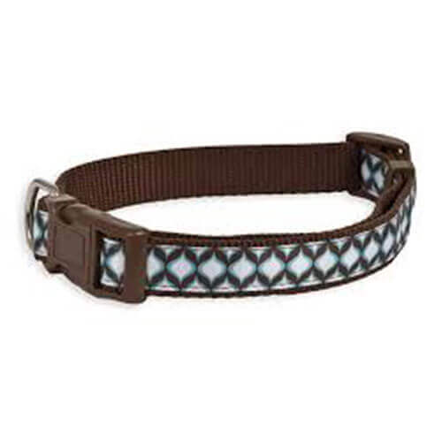 Aspen Pet Delicious Jeannie Collar