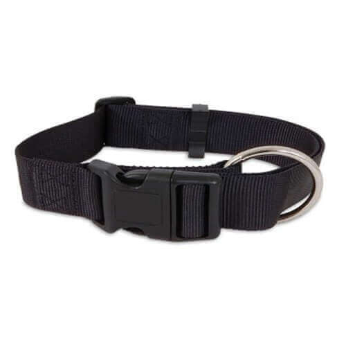 Aspen Pet Products Nylon Adjustable Collar