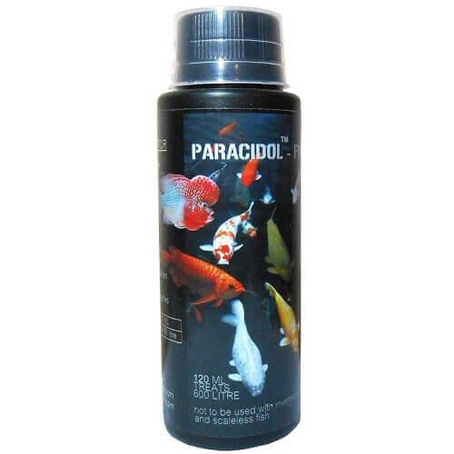 Paracidol Freshwater Aquarium Medicine