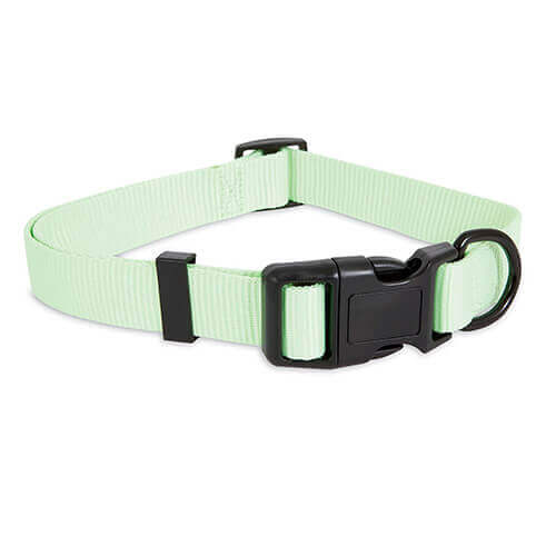Petmate Glow-In Dark Adjustable Collar Green