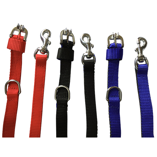 Dog Leash with Collar