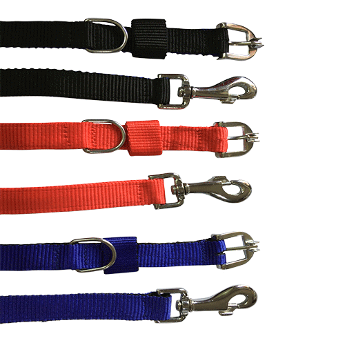 Puppy Leash with Collar