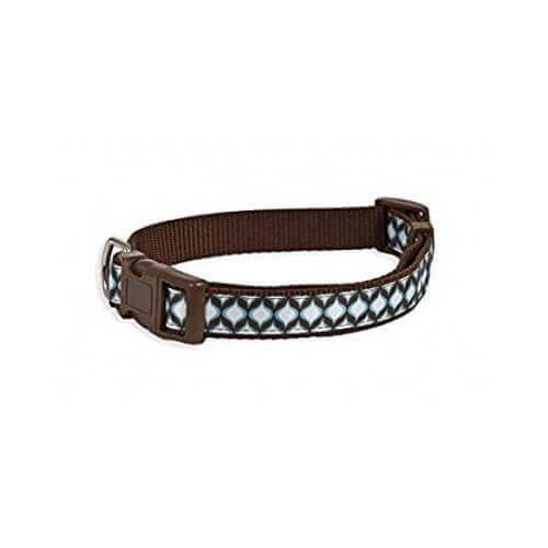 Aspen Pet Delicious Jeannie Collar 3/4'x14-20