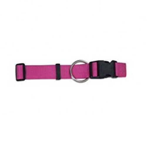 Aspen Pet Products Standard Nylon Collar Hot Pink 20-30'' 11/2''