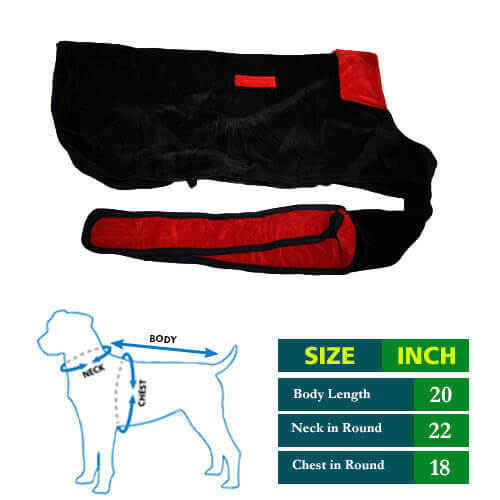 Dog Black Cottrige with Red Collar 20 no