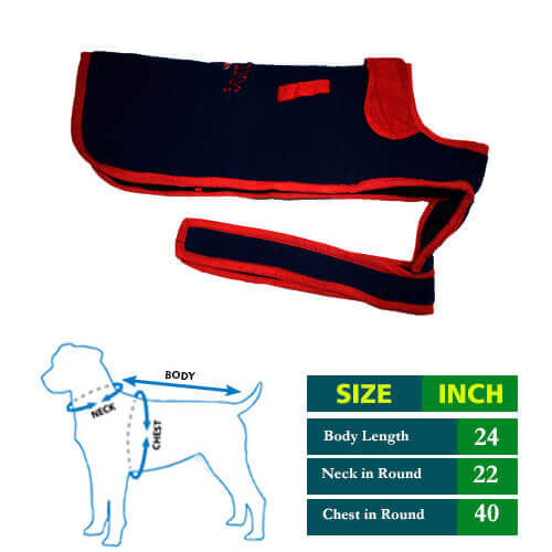 Dog Coat Cute Navy Blue With Red Collar 24no