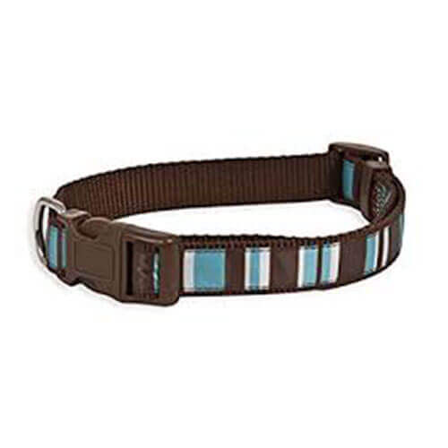 Aspen Pet Delicious Stripes Collar 3/4''X14-20