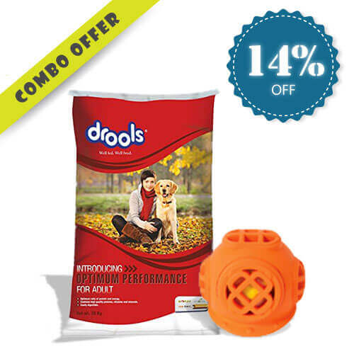 Drools Optimum Performance for Adult Dog Food, 20 kg + JW Pet Chew Toys