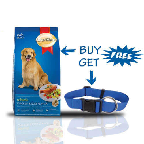 SMARTHEART CHICKEN & EGG ADULT 10KG + Free Petmate Standard Nylon Adjustable Core Collar blue
