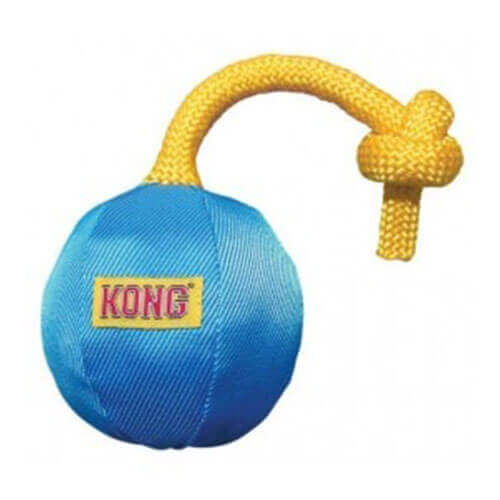Kong Small Funster Ball Dog Toy