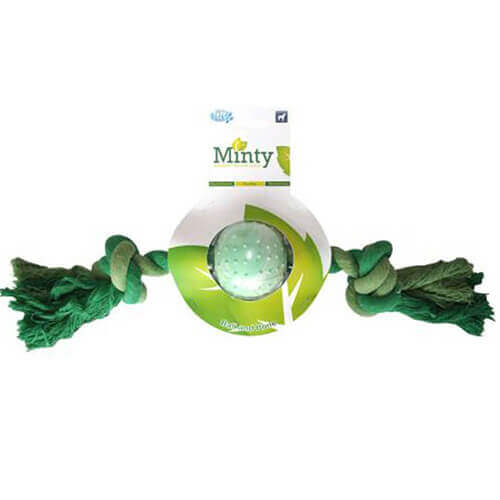 Pet Brands Minty Fresh Ball n Bone Dog Toy, Medium