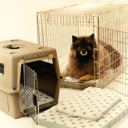 Pet Crate Pad