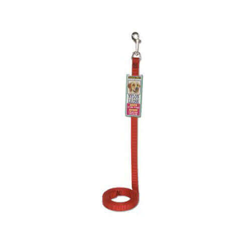 Petmate Nylon Standard Core Leash 6ft medium (Red)