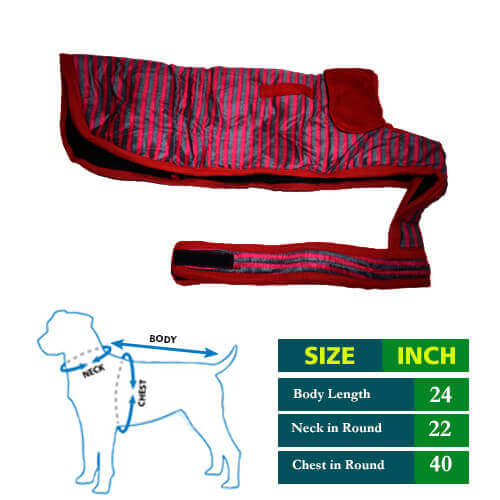 Dog Coat Pink Grew Strips with Red Collar 24 no