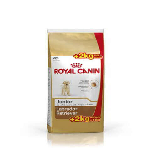 Royal Canin Labrador Junior, 12 kg