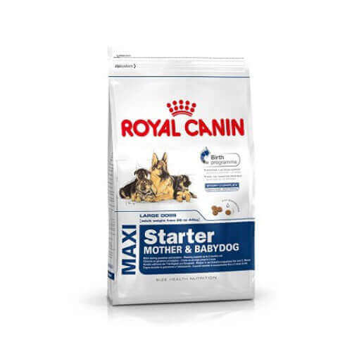 Royal Canin Maxi Starter 4 KG Dog Food