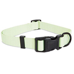 ASPEN PET ADJ COLLAR GLOW IN GREENISH WHITE