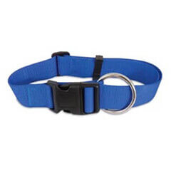 PETMATE NYLON ADJUSTABLE DOG COLLAR ROYAL BLUE