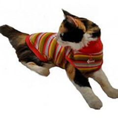 Argyle Purple Cat Sweater
