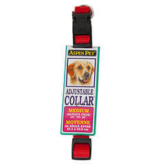 ASPEN PET PRODUCTS 15706 Nylon Adjustable Collar 10-Inch Red